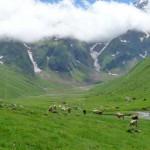 estives en vallée de La Gela - Hautes Pyrénées