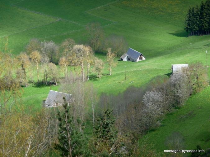Granges de vallée d'Aure - Hautes-Pyrénées