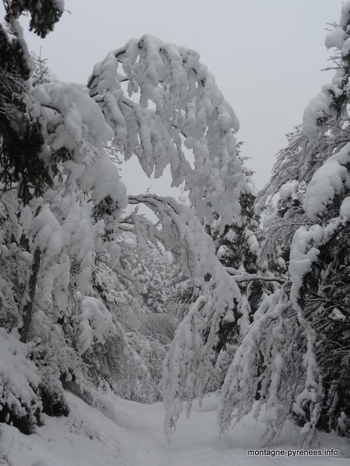 Premières neiges en vallée d'Aure