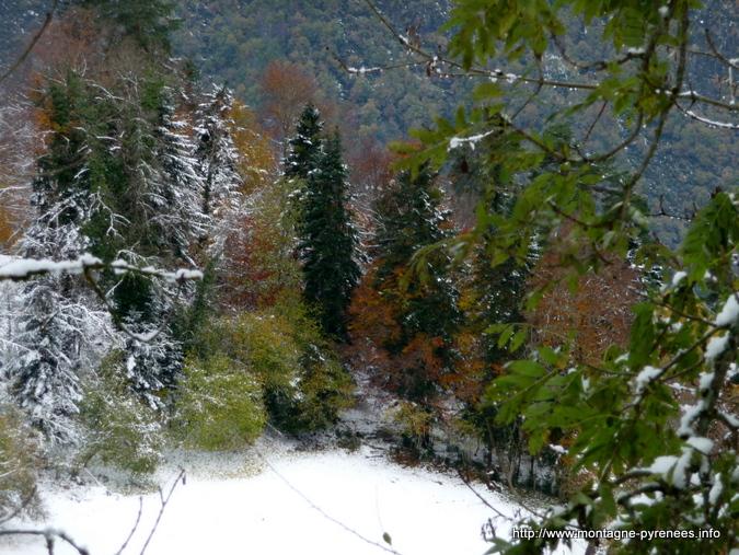 hiver et automne se côtoient en vallée d'Aure