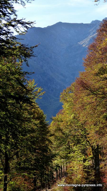 automne à la hourquette d'Ancizan