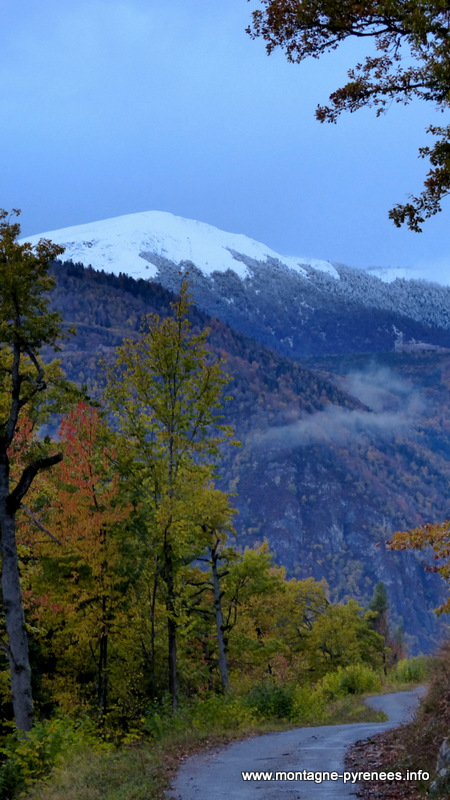 entre Grailhen et Gouaux , vue sur le Plo del Naou en vallée d'Aure - Pyrénées