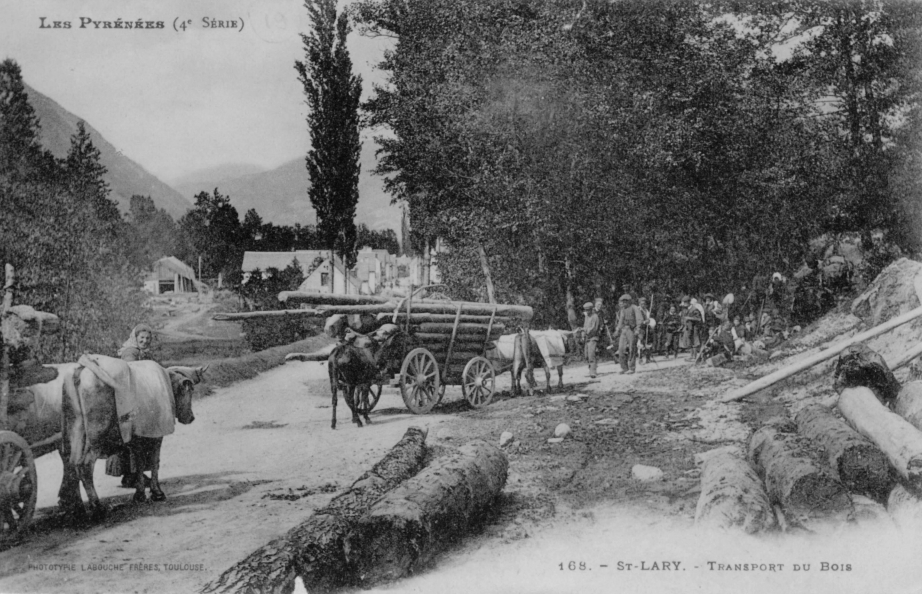 Transport du bois à Saint-Lary